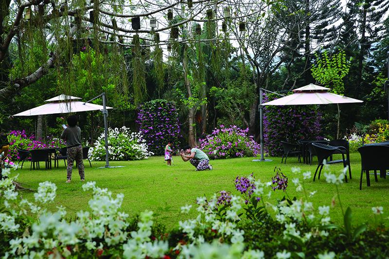 兴隆热带花园一角2.jpg